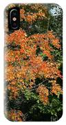 Golden Tree Moment IPhone Case