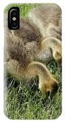 Goslings 1 IPhone Case