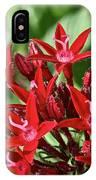 Graffiti Red Lace IPhone Case