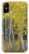 Grand Teton Aspens IPhone Case