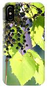 Grapes And Leaves IPhone Case
