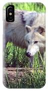 Gray Wolf Watching IPhone Case
