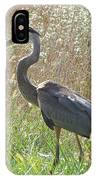 Great Blue Heron - Ardea Herodias IPhone Case