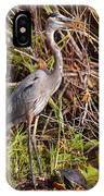 Great Blue Heron And Turtle IPhone Case