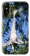 Great Blue Heron Meditation Pacific Northwest IPhone Case