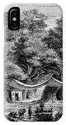 Great Chestnut Tree IPhone Case