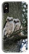 Great Horned Owls Young IPhone Case