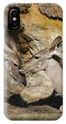 Greater Kudu Affection IPhone Case