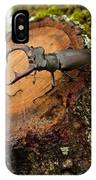 Greater Stag Beetles IPhone Case