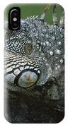 Green Iguana Barro Colorado Island IPhone Case
