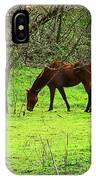 Greener Grass IPhone Case