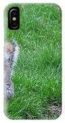 Grey Squirrel In The Rain II IPhone Case