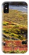 Grizzly Bears And Fall Colours, Denali IPhone Case