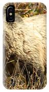 Grizzly Camouflage IPhone Case