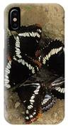 Group Of Butterflies IPhone Case