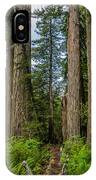 Group Of Redwoods IPhone Case