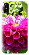 Half And Half Flower IPhone Case
