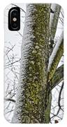 Half Frozen I IPhone Case