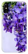 Hanging Purple Passion IPhone Case