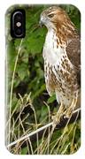Hawk At A Wedding IPhone Case