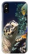 Hawksbill Turtle Feeding IPhone Case