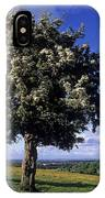 Hawthorn Tree On A Landscape, Ireland IPhone Case