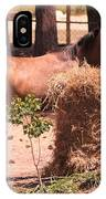 Hay's For Horses IPhone Case