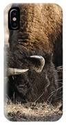 Head Butting Bison IPhone Case