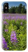 Hedge Woundwort Flower Blossoms And Field IPhone Case