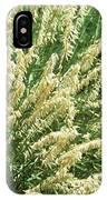 Hedgehog Fescue (festuca Punctoria) IPhone Case