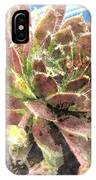 Hen And Chicks Plant IPhone Case