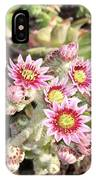 Hens And Chicks Flowers IPhone Case