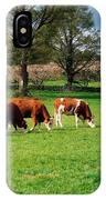 Hereford Bullocks IPhone Case