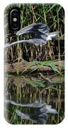 Heron Reflected In The Water IPhone Case