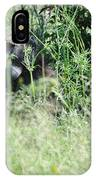 Hiding In Tall Grass IPhone Case