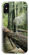 Hiker Moving Over A Fallen Redwood Tree IPhone Case
