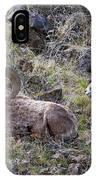 Hillside Rams IPhone Case