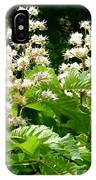 Horse Chestnut Blossoms IPhone Case