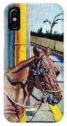 Horse In Malate IPhone Case
