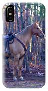 Horse Waiting For Rider IPhone Case