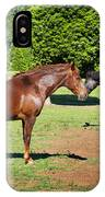 Horses Of A Different Color IPhone Case