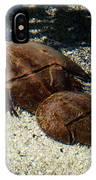 Horseshoe Crabs IPhone Case