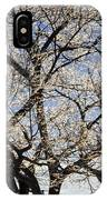 Ice Covered Tree At Sunrise IPhone Case