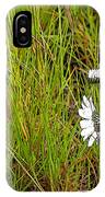 Iceland Spring IPhone Case
