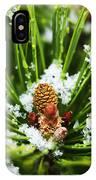 Icy Pine 1 IPhone Case