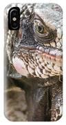 Iguana At Magens Bay IPhone Case