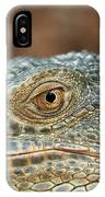 Iguana (iguana Iguana) IPhone Case