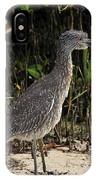 Immature Blacked Crowned Night Heron IPhone Case