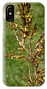 Indian Grass Seed IPhone Case