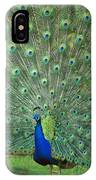 Indian Peafowl Pavo Cristatus Male IPhone Case
